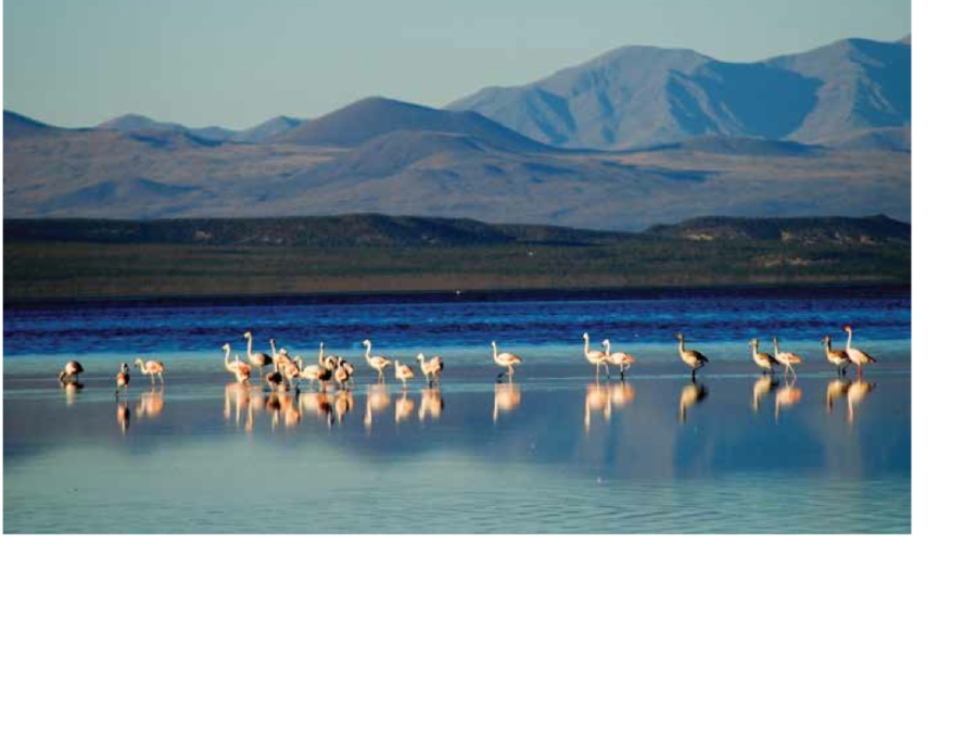 guanacache lost lakes .001