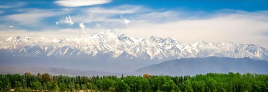 Mendoza, entre los 20 mejores lugares para visitar en 2020 según Forbes